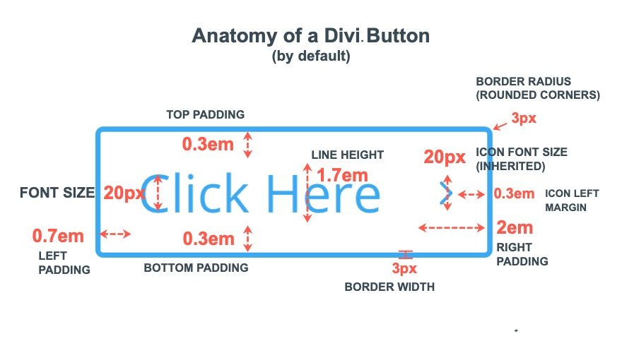 A Complete Guide for Creating Fluid Button Designs in Divi